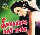 Splendore nell'erba di Elia Kazan – USA- 1961- Durata 124'